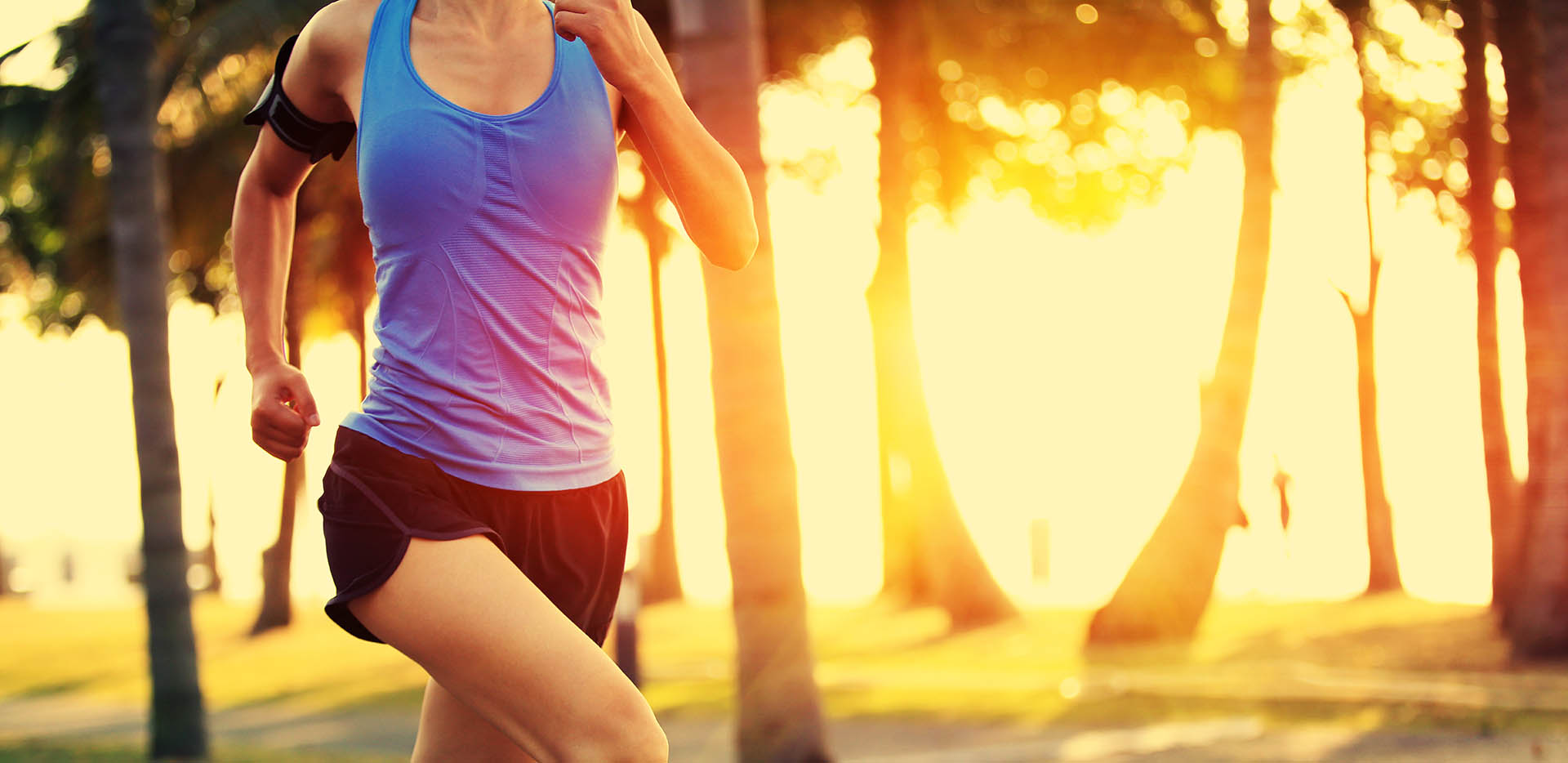 Athletic women running in the summer through a park during sunrise